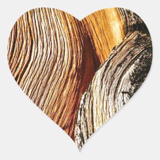 BRISTLECONEの松の木の吠え声の詳細 ハートシール