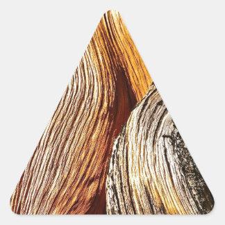 BRISTLECONEの松の木の吠え声の詳細 三角形シール
