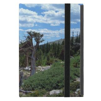 Bristleconeの松の木 iPad Mini ケース