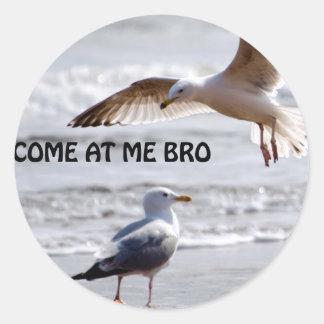 broを私で来られる! カモメ版 ラウンドシール