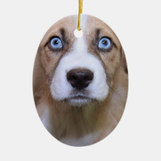 BROWN AND WHITE MIXED BREED DOG ORNAMENT セラミックオーナメント