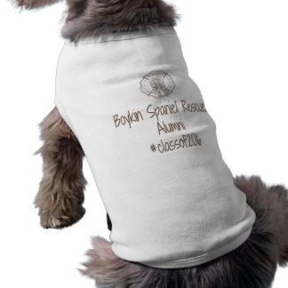 BSRの卒業生犬のティー- 2016年 ペット服