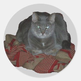 Buddah灰色の気難しい猫のステッカー ラウンドシール