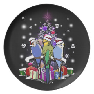 Budgerigars with Christmas Gift and Snowflakes プレート