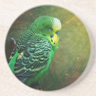 Budgieのエキゾチックな鳥 コースター