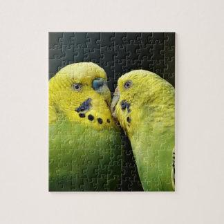 Budgieのオウムの鳥の接吻 ジグソーパズル