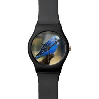 Budgie 腕時計