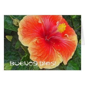 Buenos Dias カード