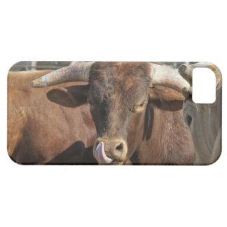 Bullとの混乱角を得ます iPhone SE/5/5s ケース
