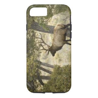 Bullのオオシカ、イエローストーン国立公園、ワイオミング、 iPhone 8/7ケース