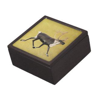 Bullのカリブー ギフトボックス