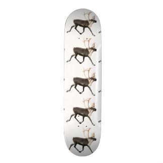 Bullのカリブー 21.6cm スケートボードデッキ