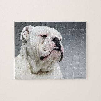 Bull白い犬 ジグソーパズル