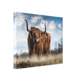 Bull キャンバスプリント