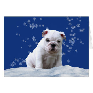 Bulldog Puppy Christmas Holiday Snow Card カード