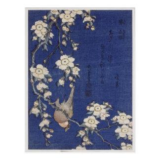 Bullfinchおよび泣く桜Katsushika ポストカード