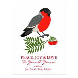Bullfinchのクリスマスの鳥 ポストカード