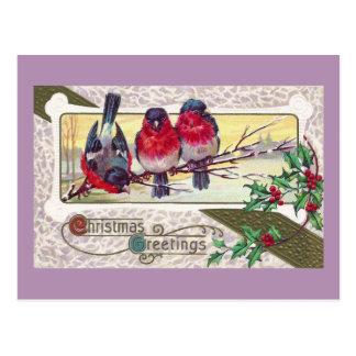 Bullfinchesおよびヒイラギのヴィンテージのクリスマス ポストカード