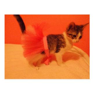 Bunni花型女性歌手の子ネコ ポストカード