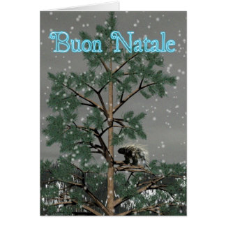 Buon Natale -松の木のヤマアラシ カード