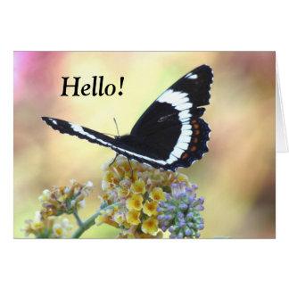 Butterfly海軍大将の挨拶状 カード