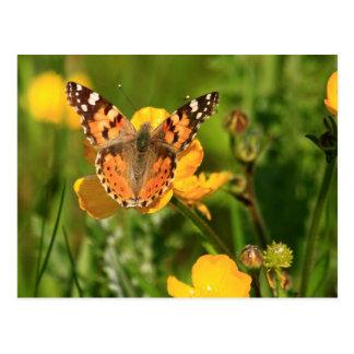 Butterfly色彩の鮮やかな女性 ポストカード