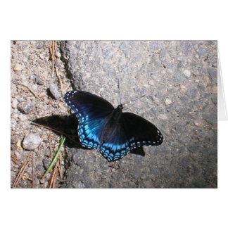 Butterfly赤によって斑点を付けられる海軍大将 カード