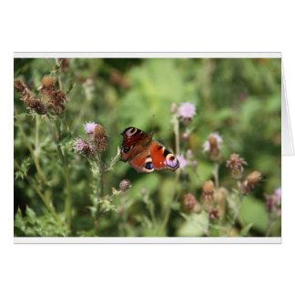 Butterflying グリーティングカード