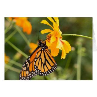 Butterly (昆虫)オオカバマダラ、モナーク カード
