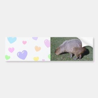 Buttocks of the Capybara-2 バンパーステッカー