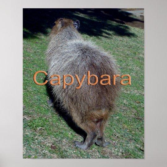 Buttocks of the Capybara-2 ポスター