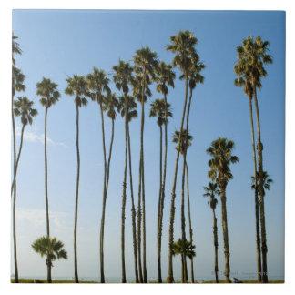 Cabrilloの道、サンタ・バーバラ、カリフォルニア 正方形タイル大