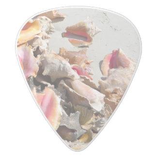 Caicosのビーチ|のトルコ人および写真の貝殻 ホワイトデルリン ギターピック