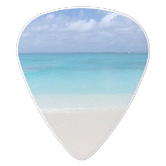 Caicosの風下のビーチ|のトルコ人および写真 ホワイトデルリン ギターピック