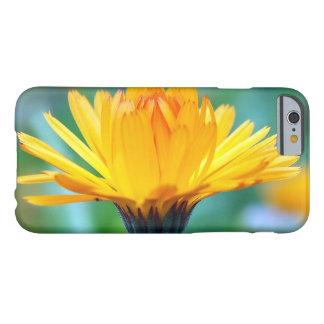 calendula barely there iPhone 6 ケース