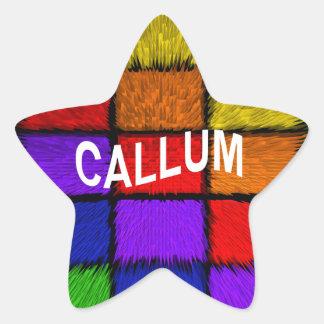 CALLUM 星シール