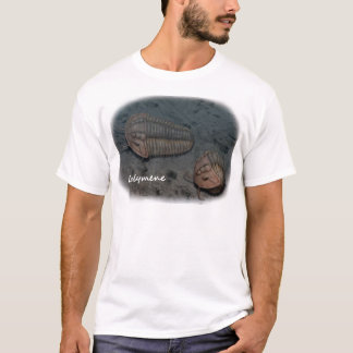 Calymene Trilobite Tシャツ