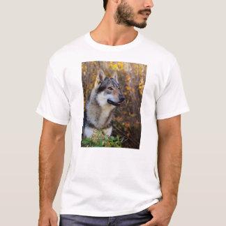 Camiseta Hombre Foto Tシャツ