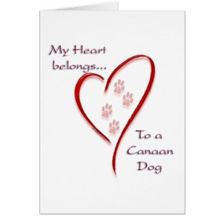Canaan犬のハートは属します カード