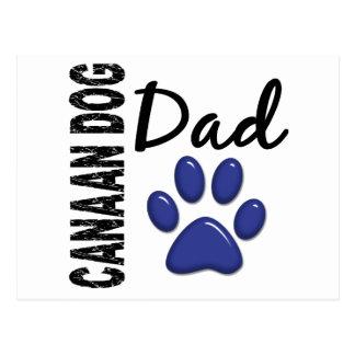 Canaan犬のパパ2 ポストカード