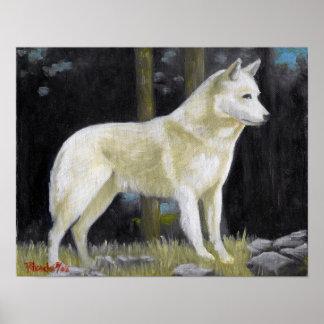 Canaan犬のポートレートポスタープリント ポスター