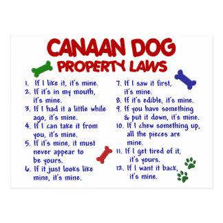CANAAN犬の特性の法律2 ポストカード