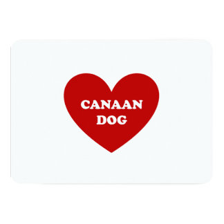 Canaan犬 カード