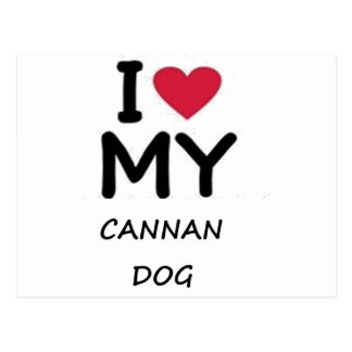 canaan犬 ポストカード