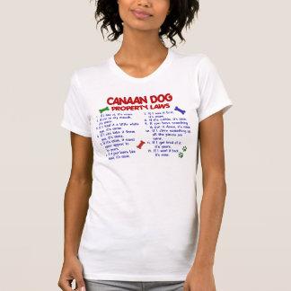 CANAAN犬PL2 Tシャツ