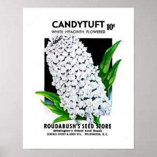 Candytuftの種の包みのラベル ポスター
