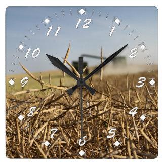 Canolaの収穫 スクエア壁時計