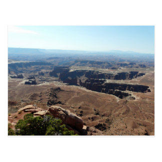 Canyonlandsの景色 ポストカード