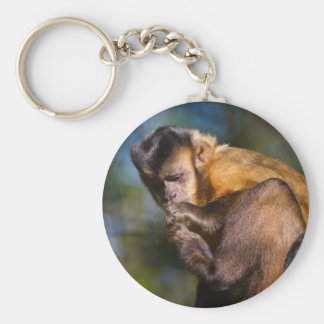 Capuchin猿 キーホルダー