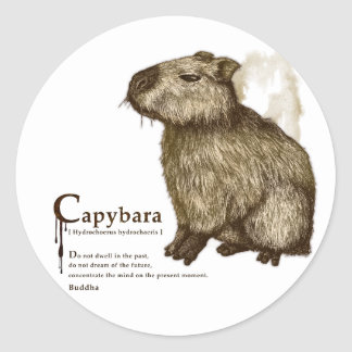 capybara - sepia ラウンドシール